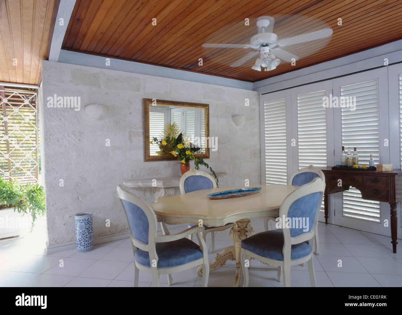 Ceiling Fan Above Cream Table And Traditional Blue Upholstered Chairs In  Modern Caribbean Dining Room With Stone Wall