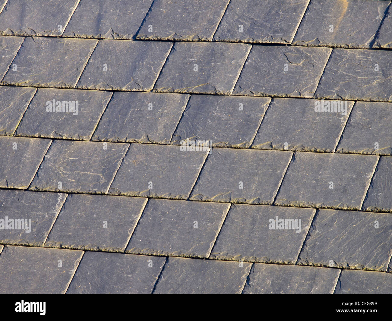 Grey Slate Roof Tiles Stock Photo Royalty Free Image