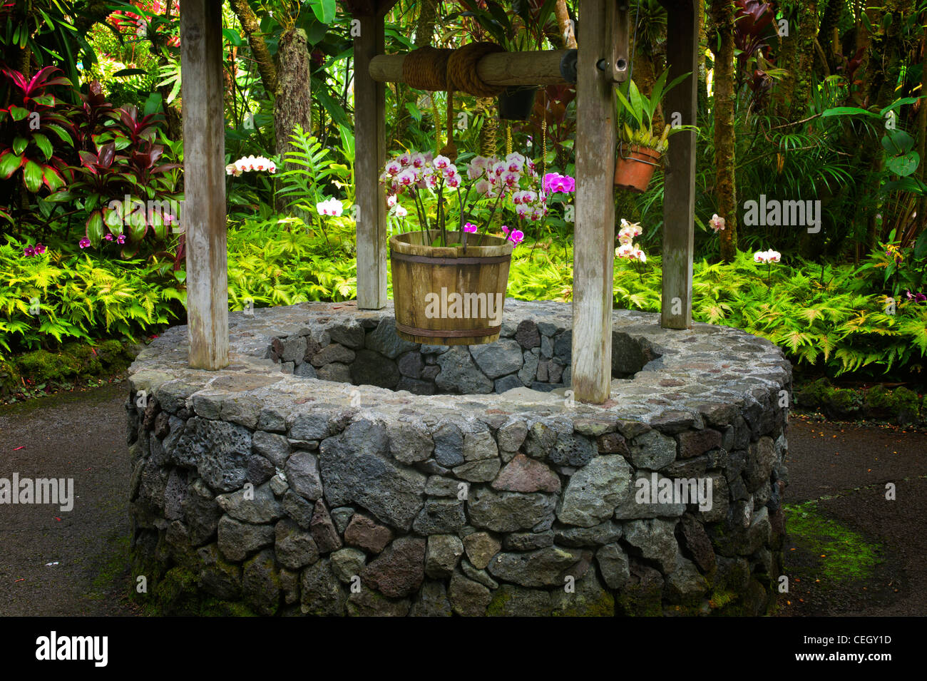 Garden designs with bridges and wishing wells landscaping ideas - Wishing Well Hawaii Tropical Botanical Gardens Hawaii The Big Island Stock