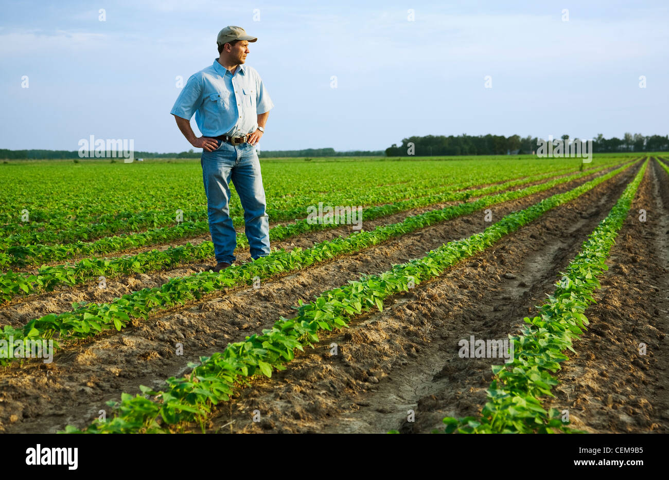 how to become a farmer in usa