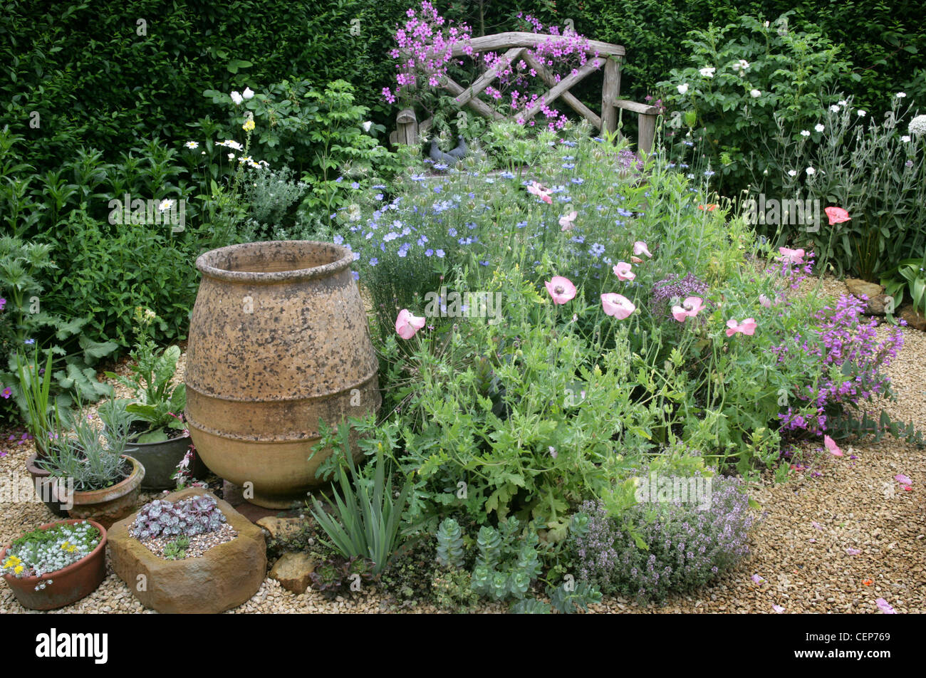 Stock Photo   Summer Garden Gravel, Pink Poppies, Large Terracotta Pot,  Potted Plants And Wood Bench In Background, Wardhurst, East Sussex