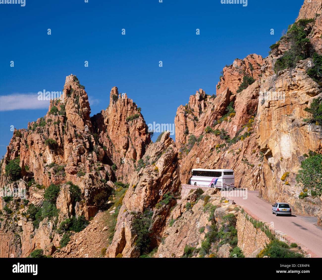 tour and car on the road through les calanche near