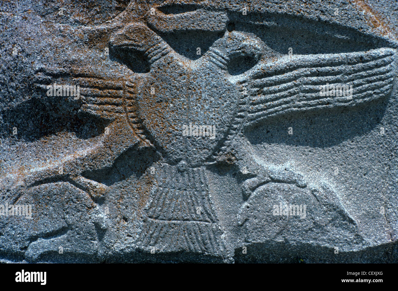 Hittite bas relief or stone carving of two headed eagle