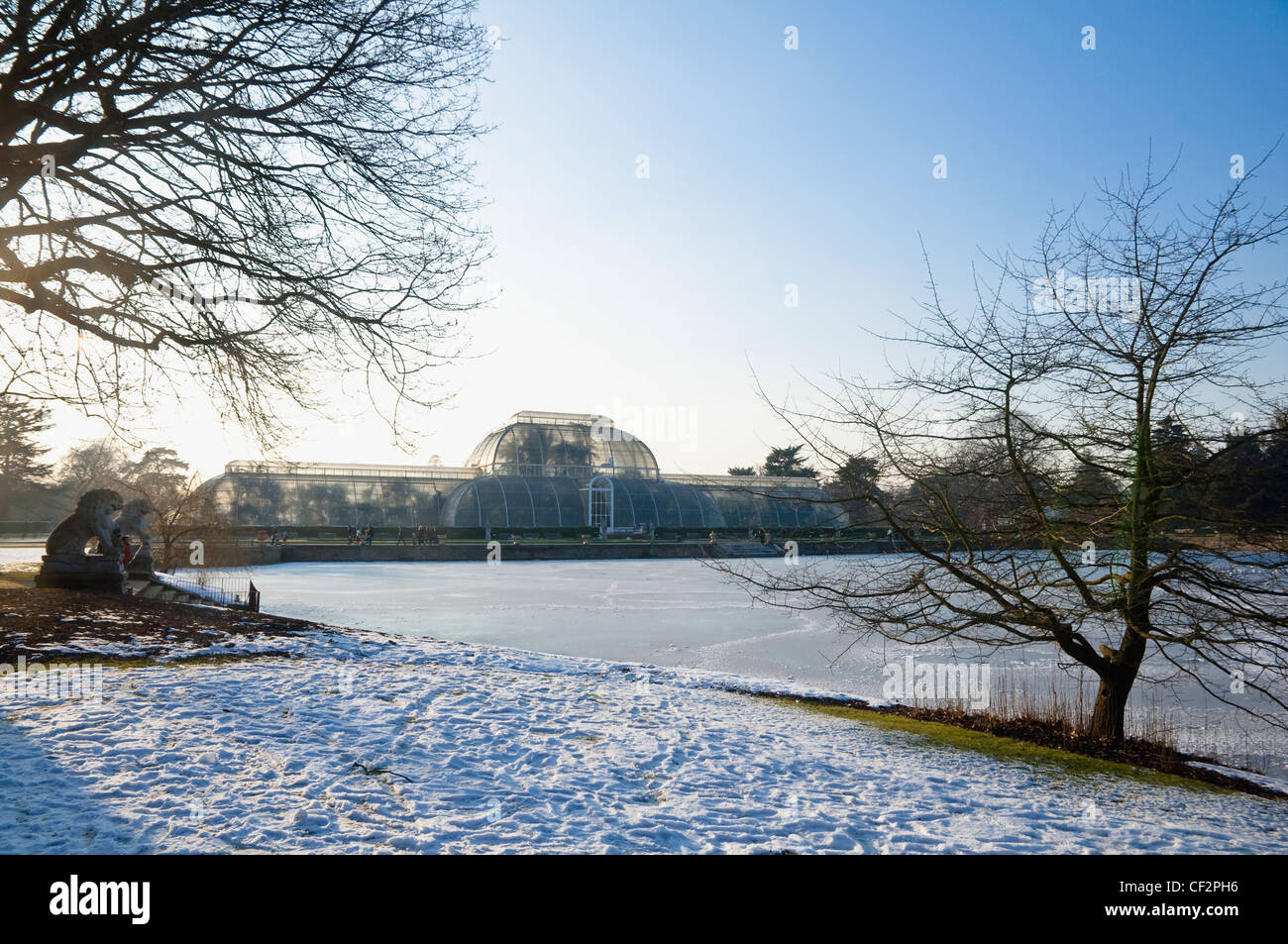 a winter view of the palm house with snow and icy lake at kew