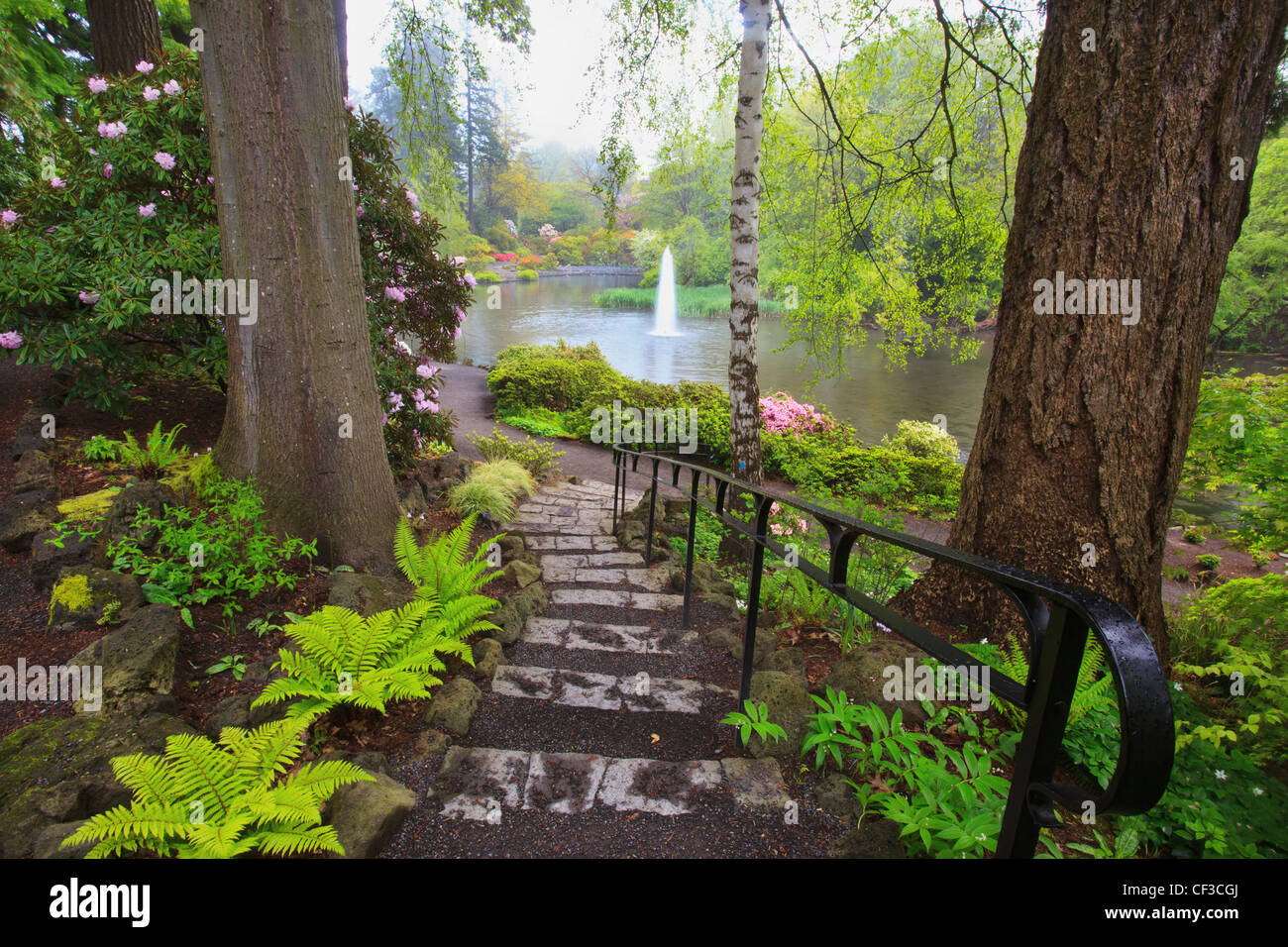 Spring Flowers In Crystal Springs Rhododendron Garden Portland Stock Photo Royalty Free Image