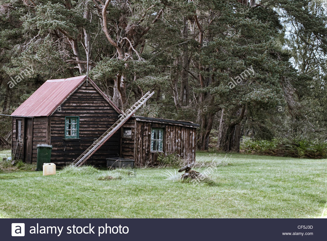Old Log Cabin In The Woods Near Aviemore Stock Photo