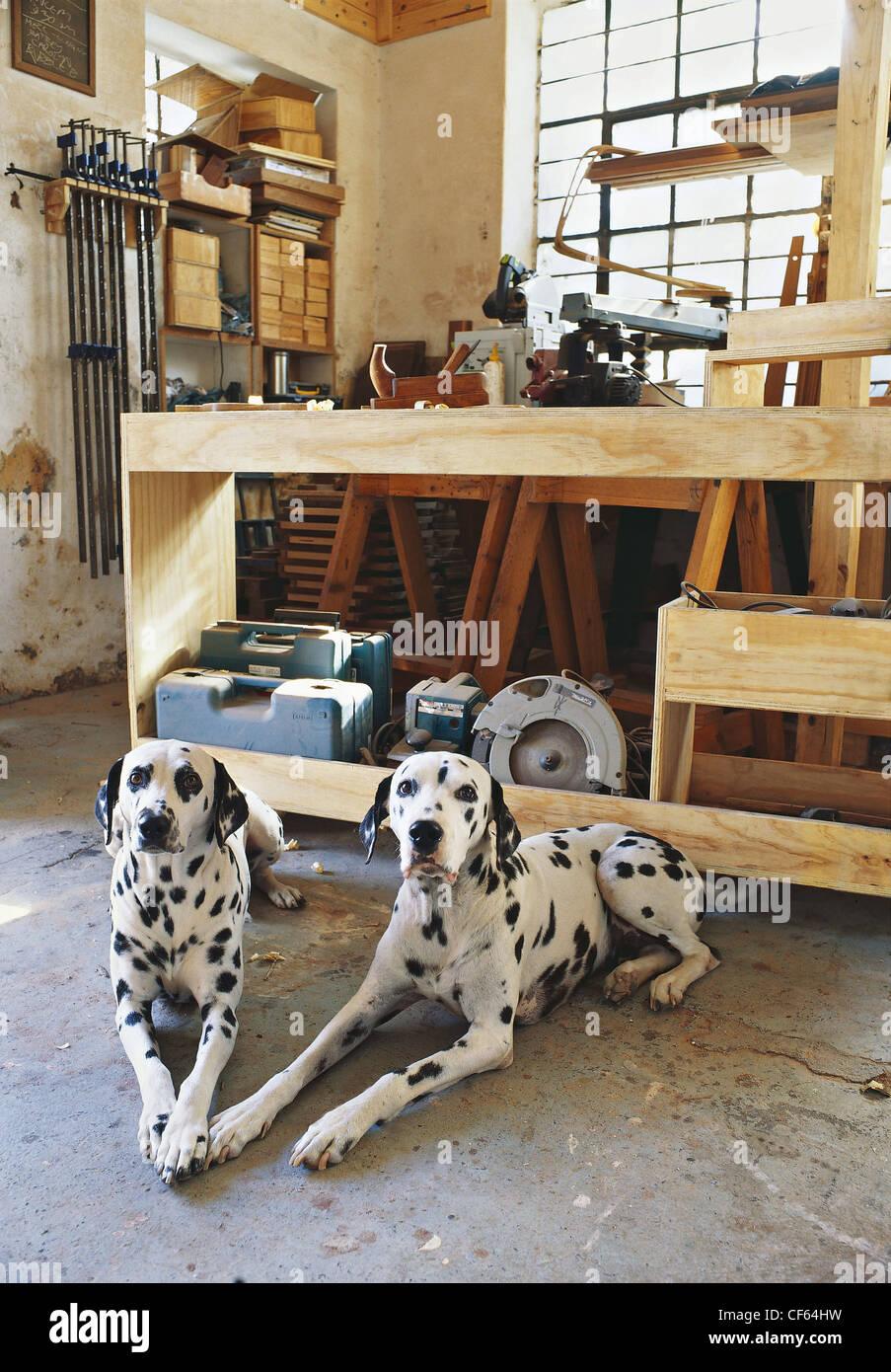 REAL HOMES :Townhouse in Bo Kaap Cabinet maker, filmset designer ...