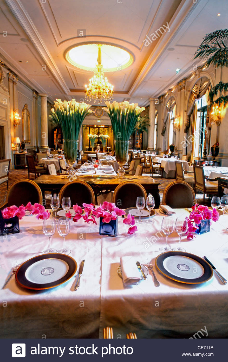 Fancy restaurant table setting -  France Paris Fancy French Restaurant Le V Le Cinq Haute Cuisine