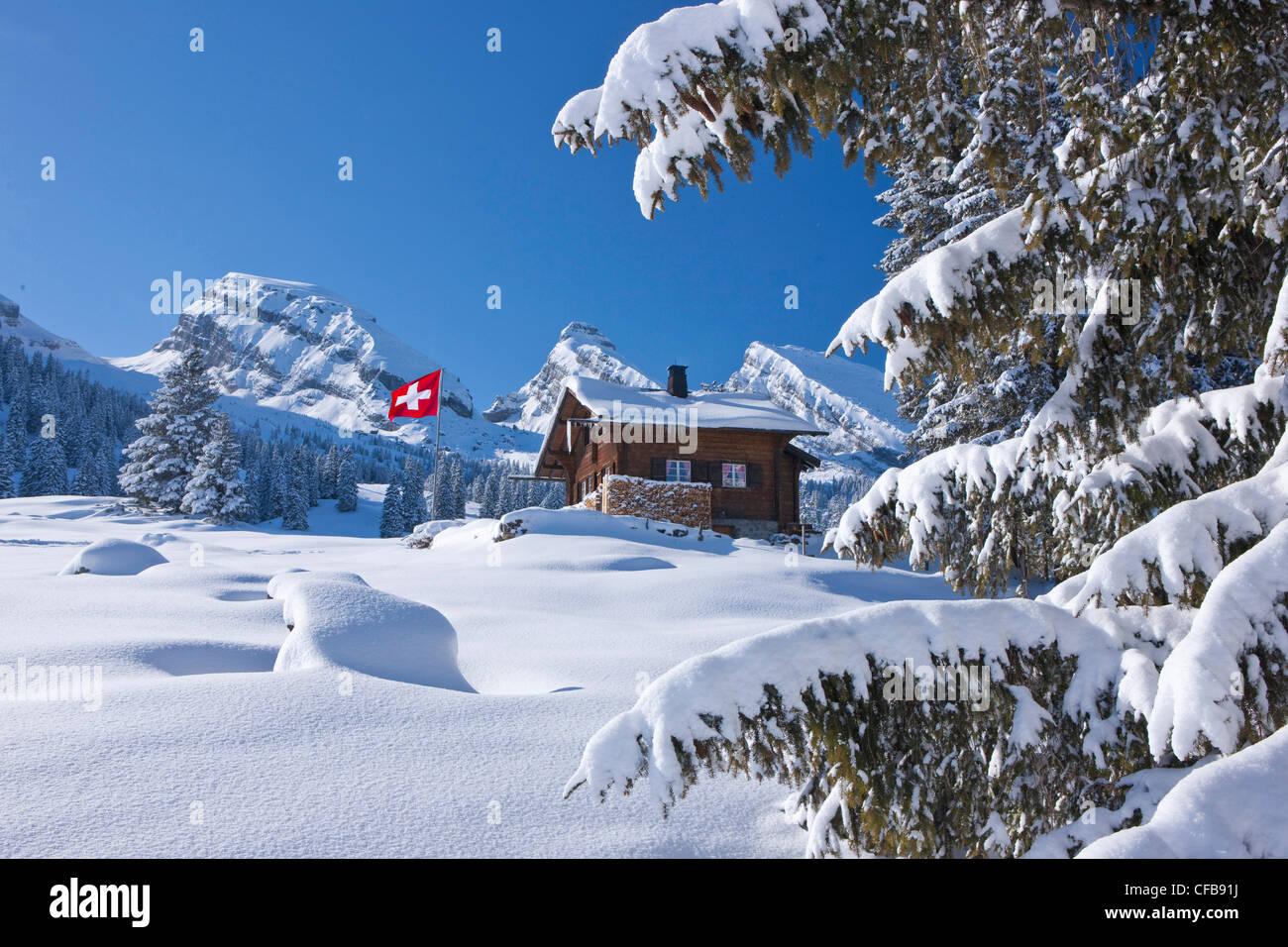 Swiss Mountain House flag, flags, swiss flag, hut, mountain house, alp hut, mountain