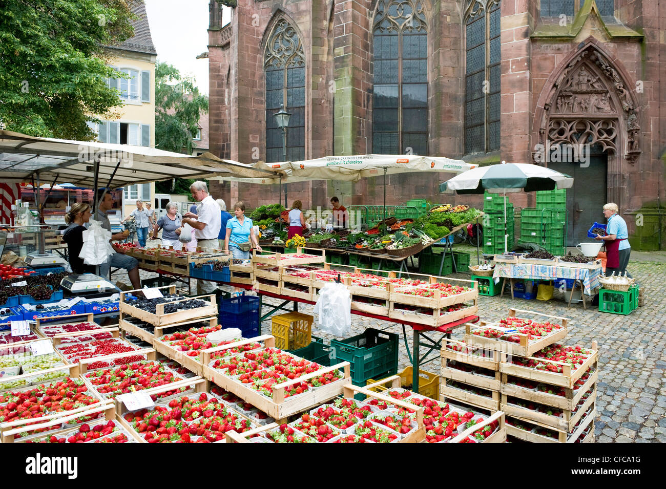 market in minster square freiburg minster in background freiburg im stock photo royalty free. Black Bedroom Furniture Sets. Home Design Ideas