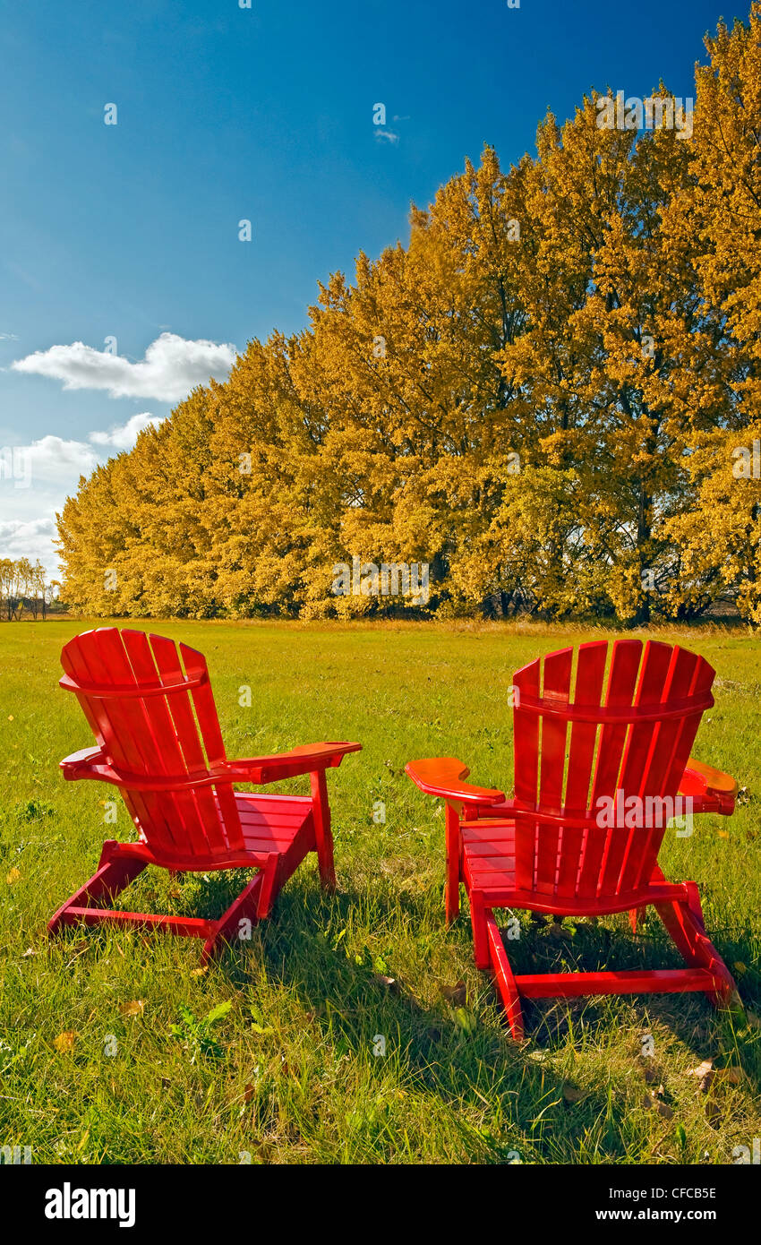 Stock Photo   Two Chairs At The Edge Of A Hay Field With A Shelterbelt In  Autumn Colours In The Background Near Dufresne, Manitoba, Canada