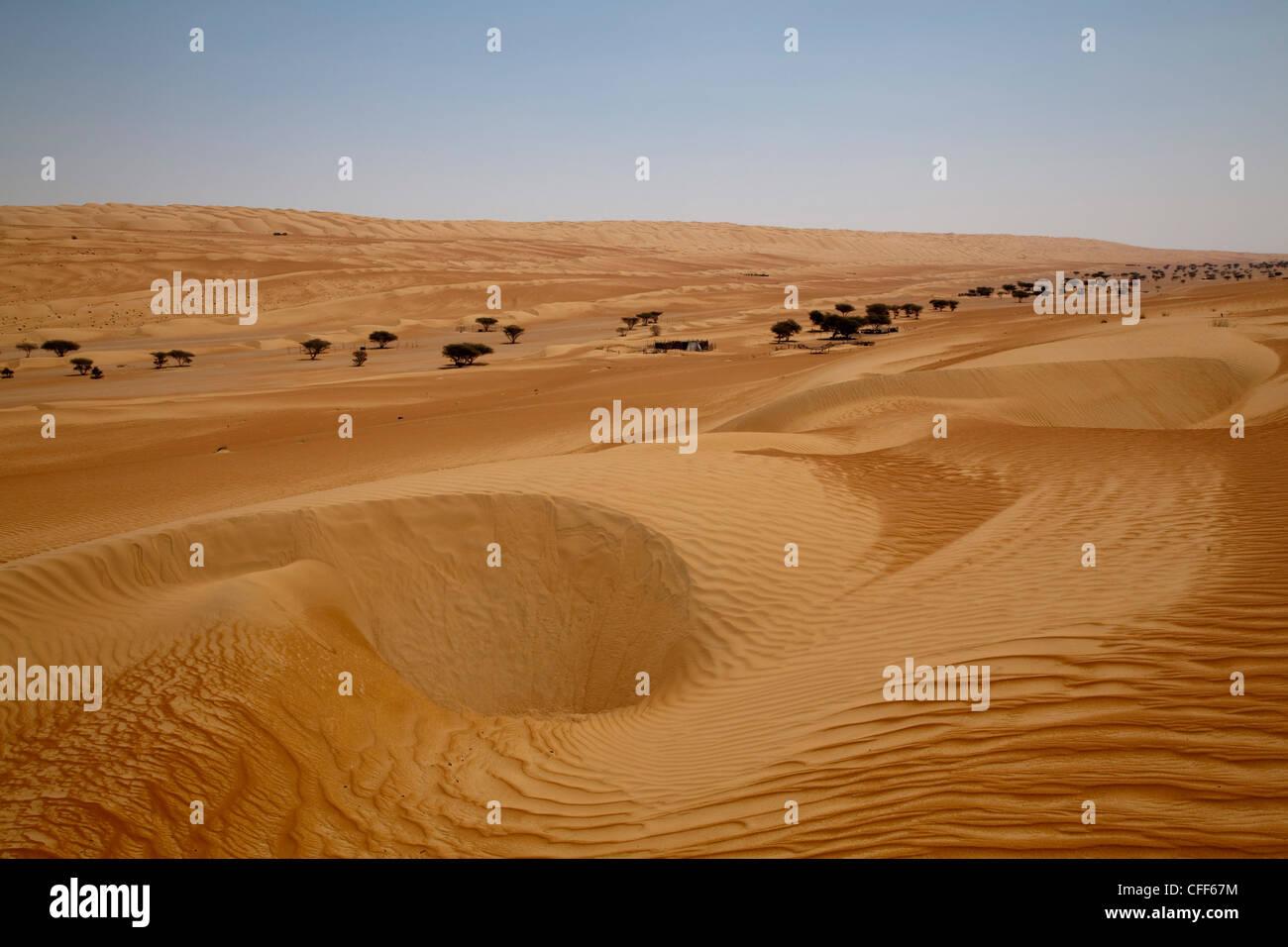 Wahiba sands desert bidiya ash sharqiyah oman arabian wahiba sands desert bidiya ash sharqiyah oman arabian peninsula sciox Images