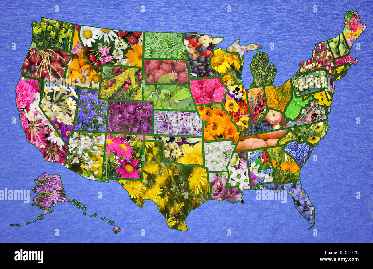 USA American High Resolution Map From Flowers And Plants Great - Usa map high resolution