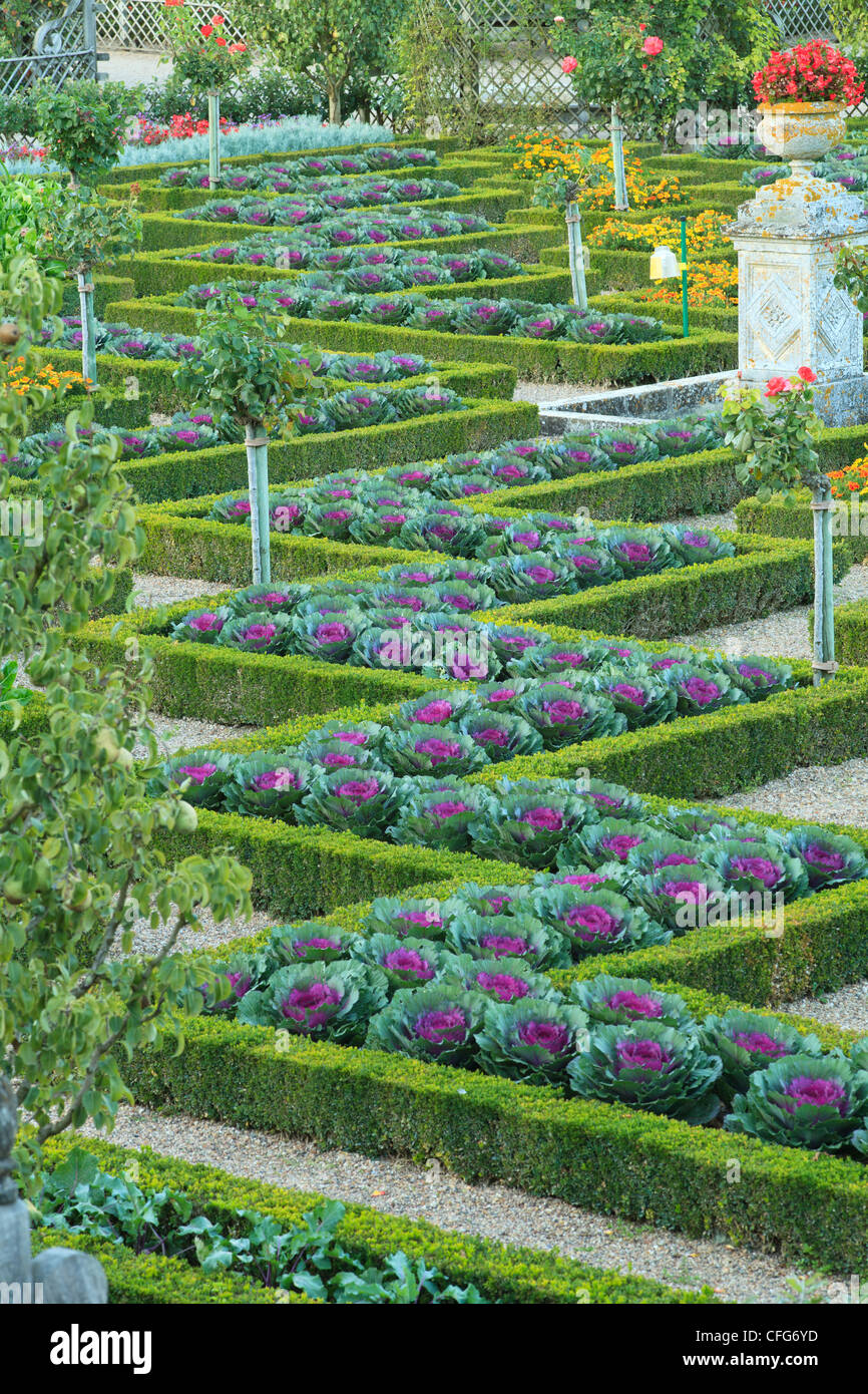 Ornamental Kitchen Garden France Gardens Of The Castle Of Villandry The Kitchen Garden