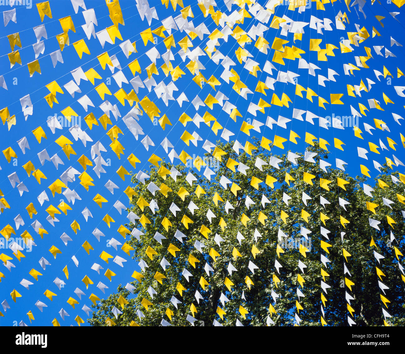 Garland Yellow Amp White Bunting Against Deep Blue Sky And Tree
