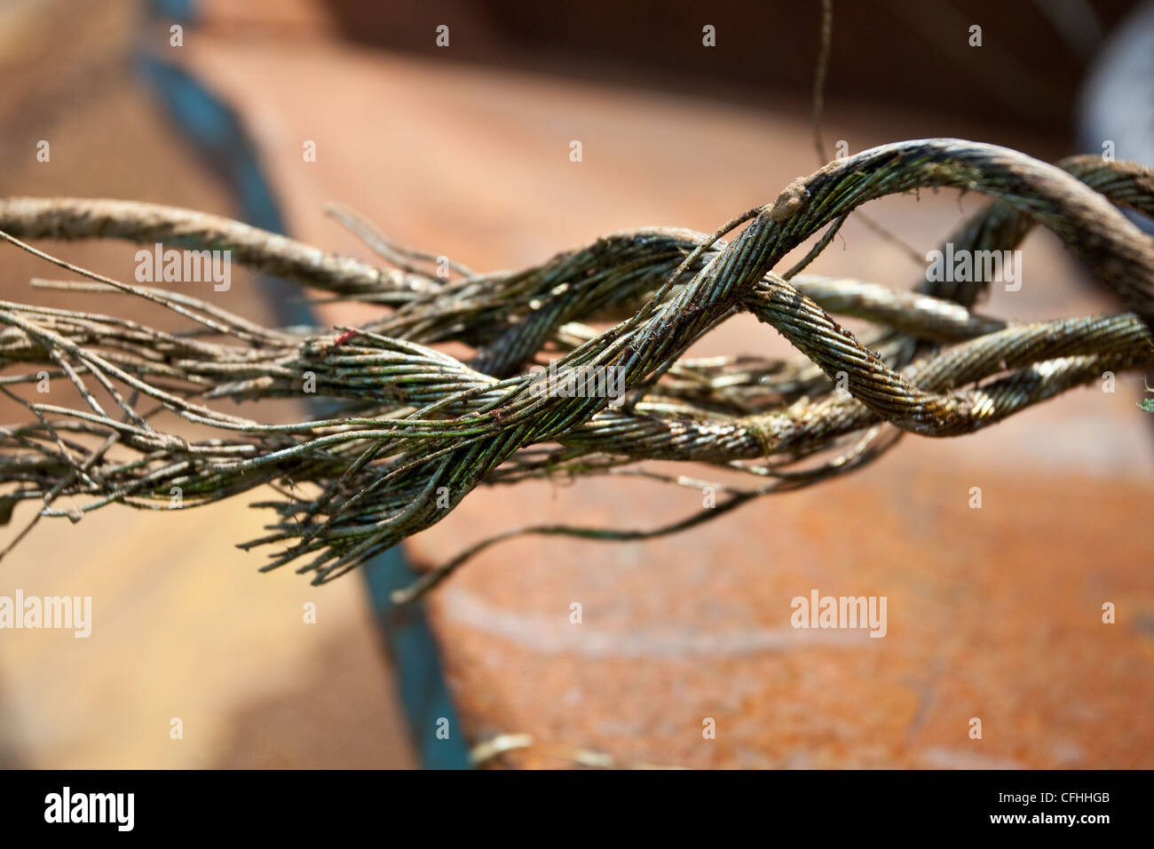 Close up of a corroded or broken wire rope left in waste skips ...