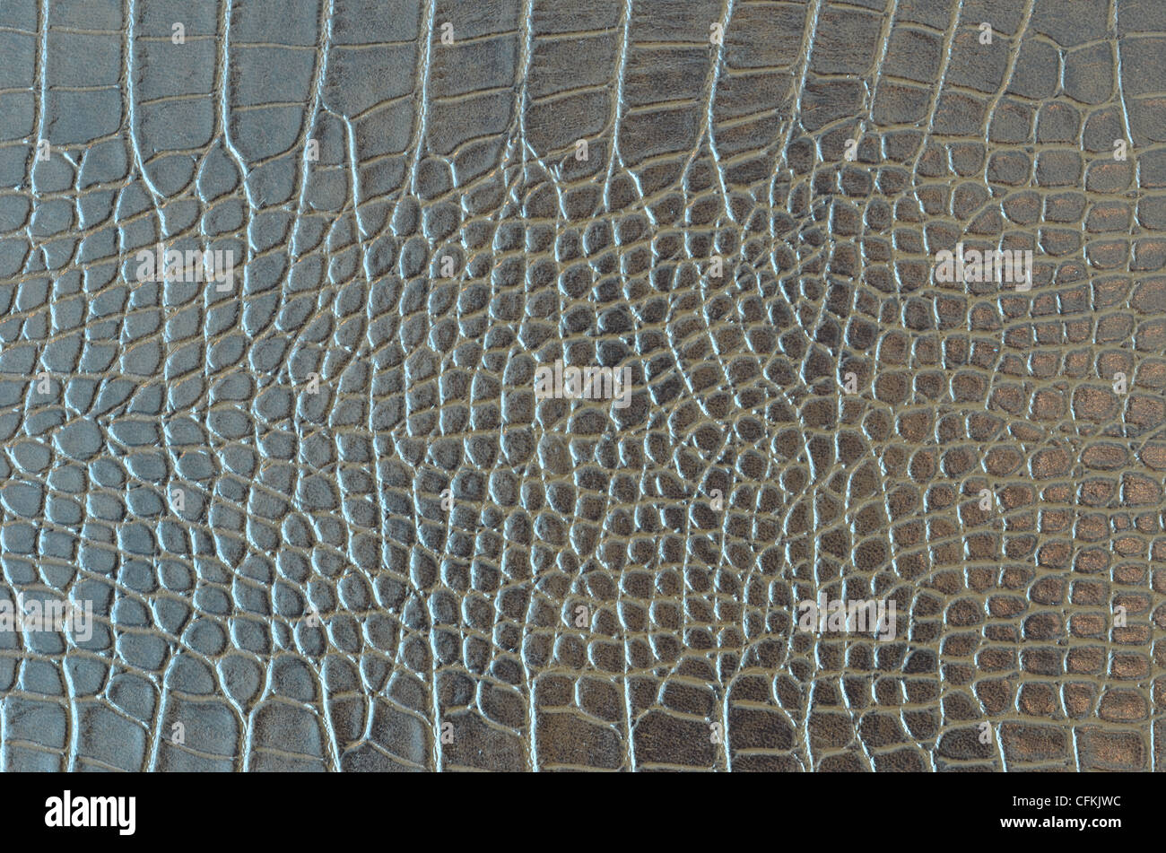 Alligator Skin Texture Stock Images, Royalty-Free Images ...