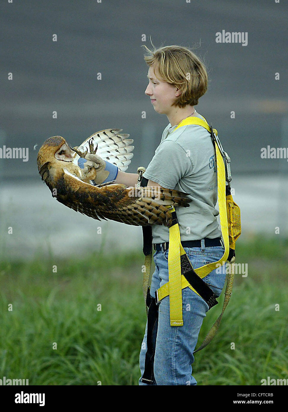 tc met of owl meghan mccarthy the palm beach post 010507 tc met 6of7 owl meghan mccarthy the palm beach post 0031999a clo palm city treasure coast wildlife center the center prefers to be called this