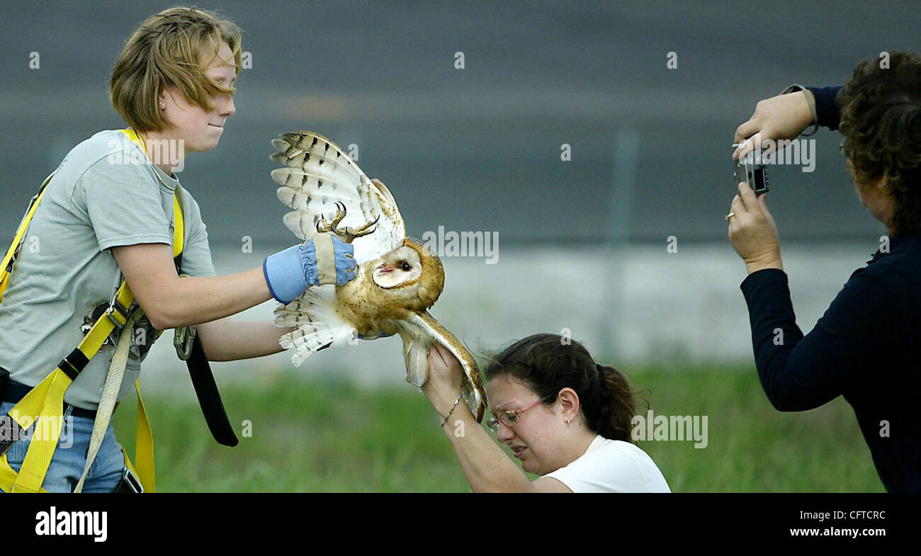 tc met of owl meghan mccarthy the palm beach post 010507 tc met 7of7 owl meghan mccarthy the palm beach post 0031999a clo palm city treasure coast wildlife center the center prefers to be called this