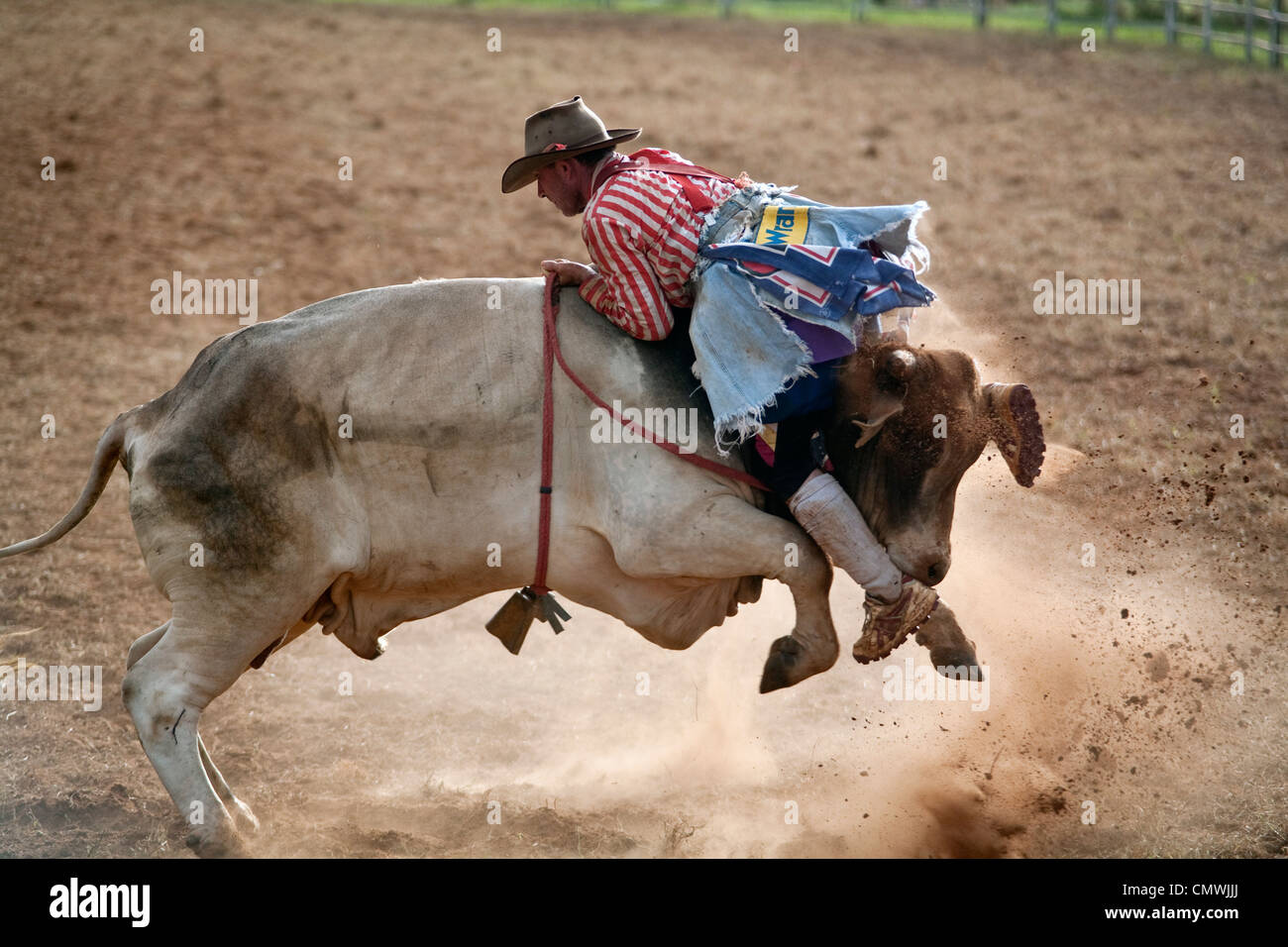 a rodeo clown takes a ride on a bull backwards mt garnet rodeo