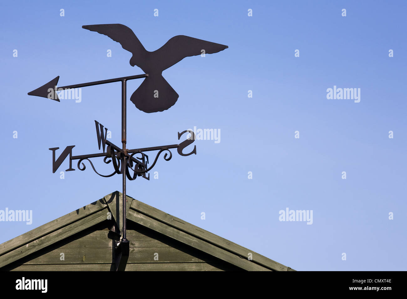 falcon weather vane on a garden shed against a blue sky - Weather Vanes