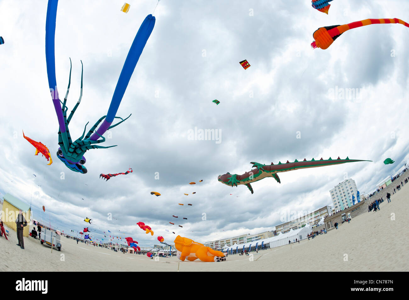 berck sur mer international kite festival cerfs volants stock photo royalty free image. Black Bedroom Furniture Sets. Home Design Ideas