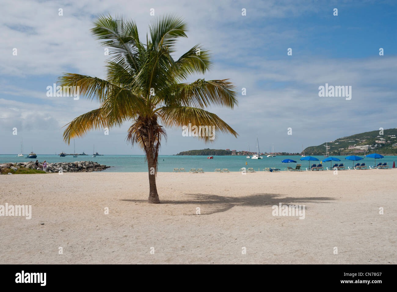 sint maarten singles Get the top 10 saint martin/sint maarten nightlife read the 10best saint martin/sint maarten nightlife reviews and view users' nightlife ratings.
