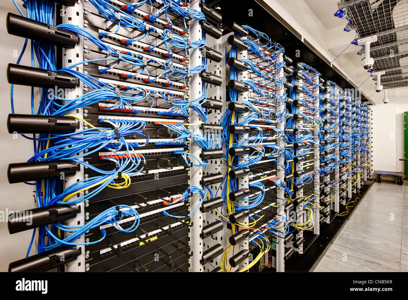 Wall Of Network Cabling Blue Bank Computer Room Stock