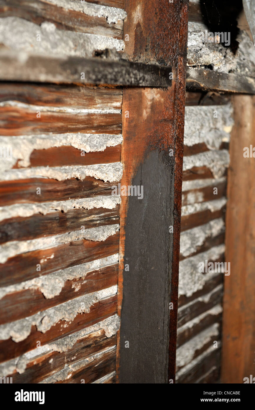Lath And Plaster : Back of lath and lime plaster wall showing how the