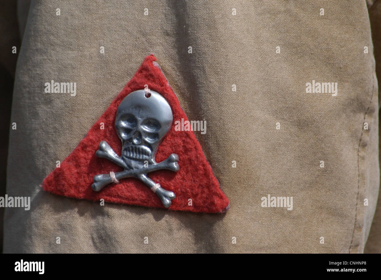 Deaths head totenkopf emblem of the czechoslovak legions in emblem of the czechoslovak legions in russia during the russian civil war biocorpaavc Choice Image
