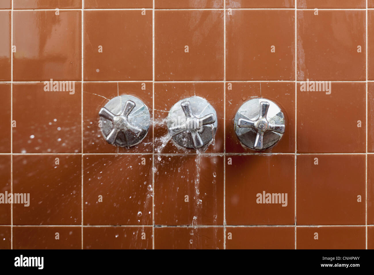 A shower faucet handle spraying leaking water Stock Photo ...