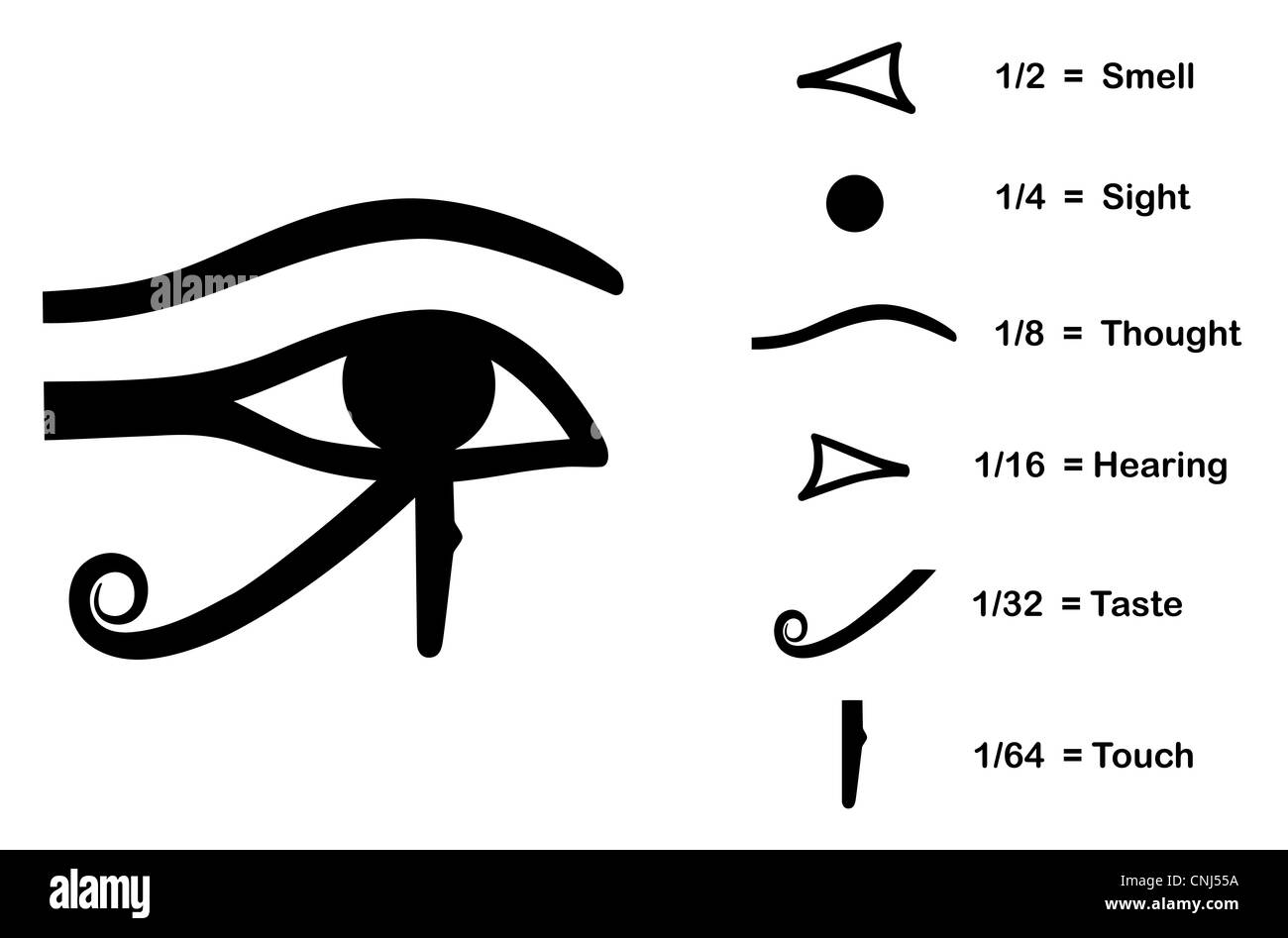 Horus black and white stock photos images alamy the eye of horus eye of ra wadjet believed by ancient egyptians to biocorpaavc Images