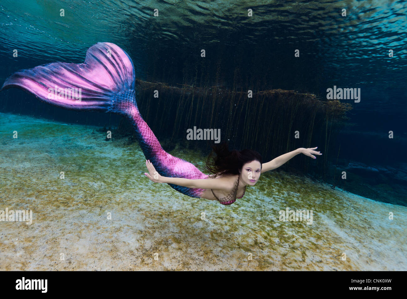 young mermaid swimming underwater in the rainbow river in florida