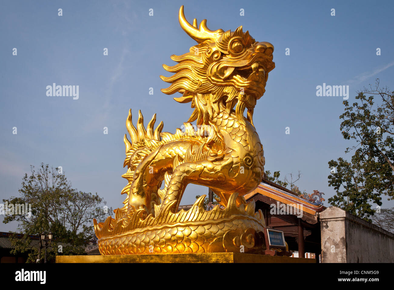 Vietnam Dragon: Golden Dragon, Symbol Of Nguyen Dynasty, In The Imperial