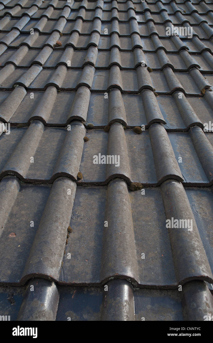 Old Double Roman Clay Roof Tiles On Barn Roof Stock Photo