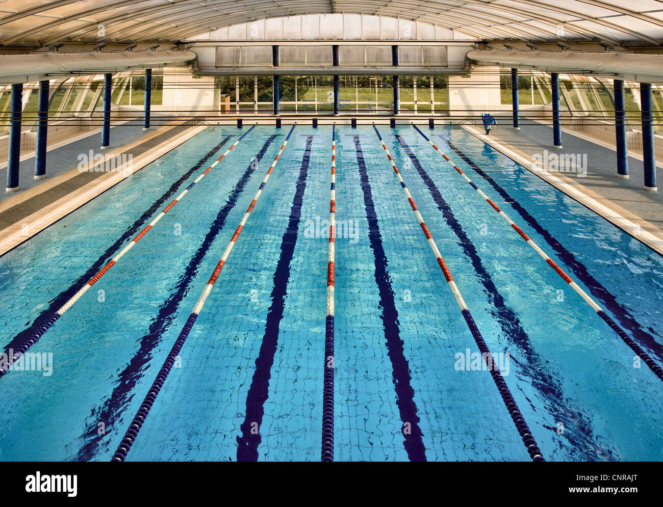 Overhead view of lanes of swimming pool stock photo royalty free image 47841776 alamy - Olympic swimming pool lanes ...