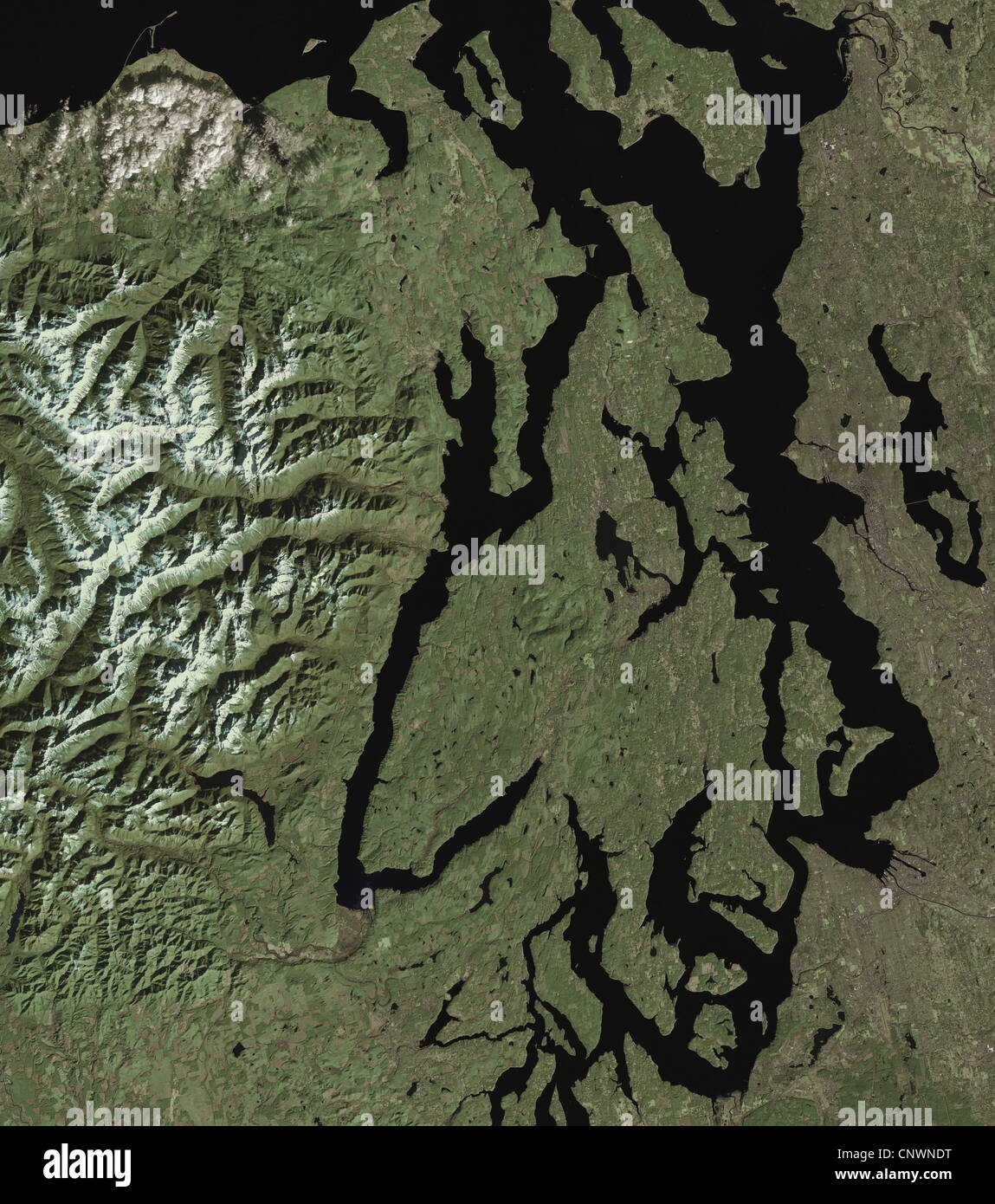 satellite image of Puget Sound Seattle Olympic Mountains