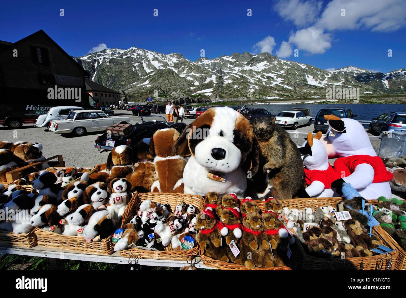 Saint Bernard Dogs as cuddle toys at souvenir shop of ...