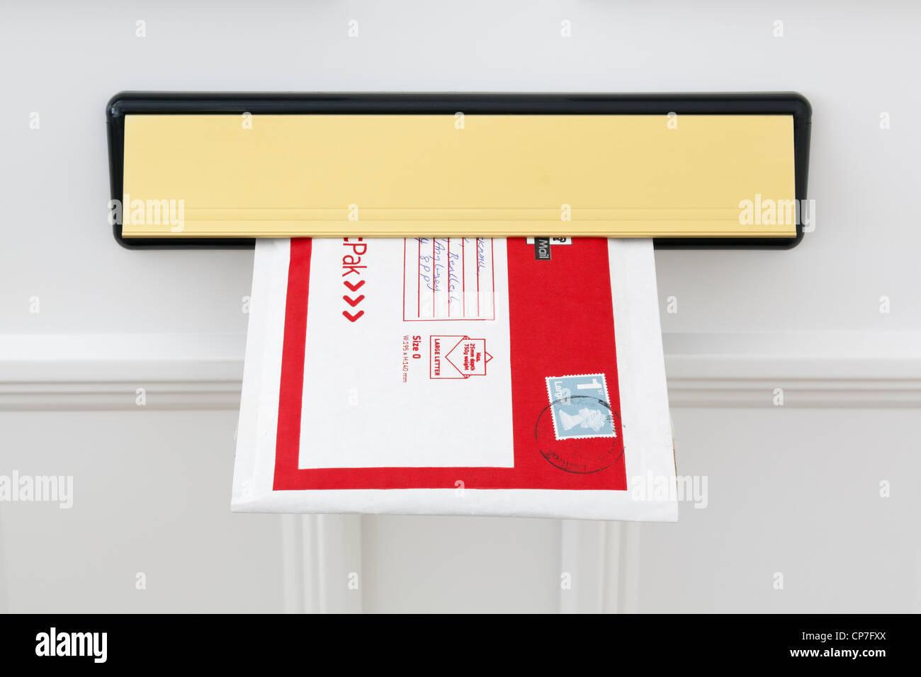 Mail Door Amp How To Burglar Proof Your Mail Slot Door