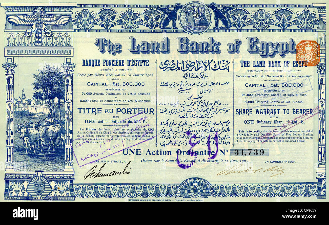historic stock certificate share image of cows in front of an
