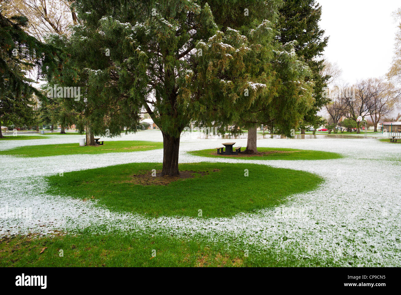 Alpine Park Early May Snowstorm Alpine Park Historic Downtown District