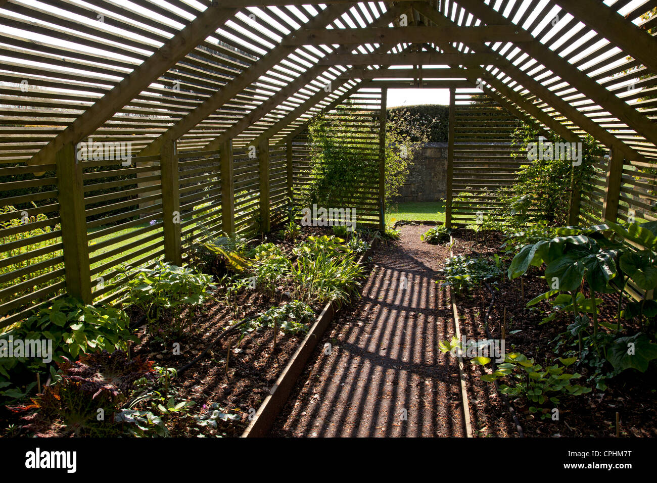 Wooden Slated Plant Shade House Garden England Stock Photo