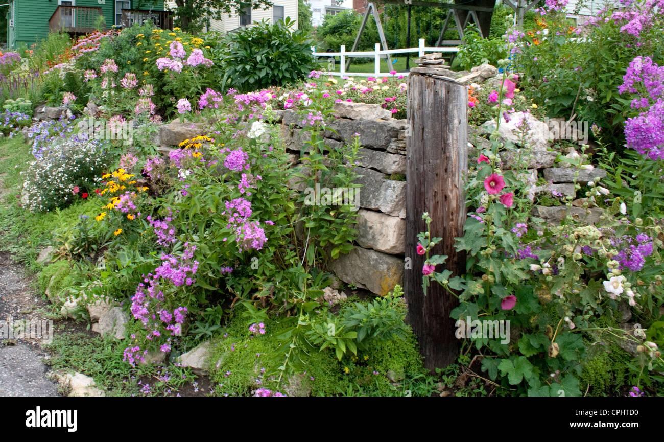 Stone wall flower garden growing hollyhocks violet phlox for Flower wall garden