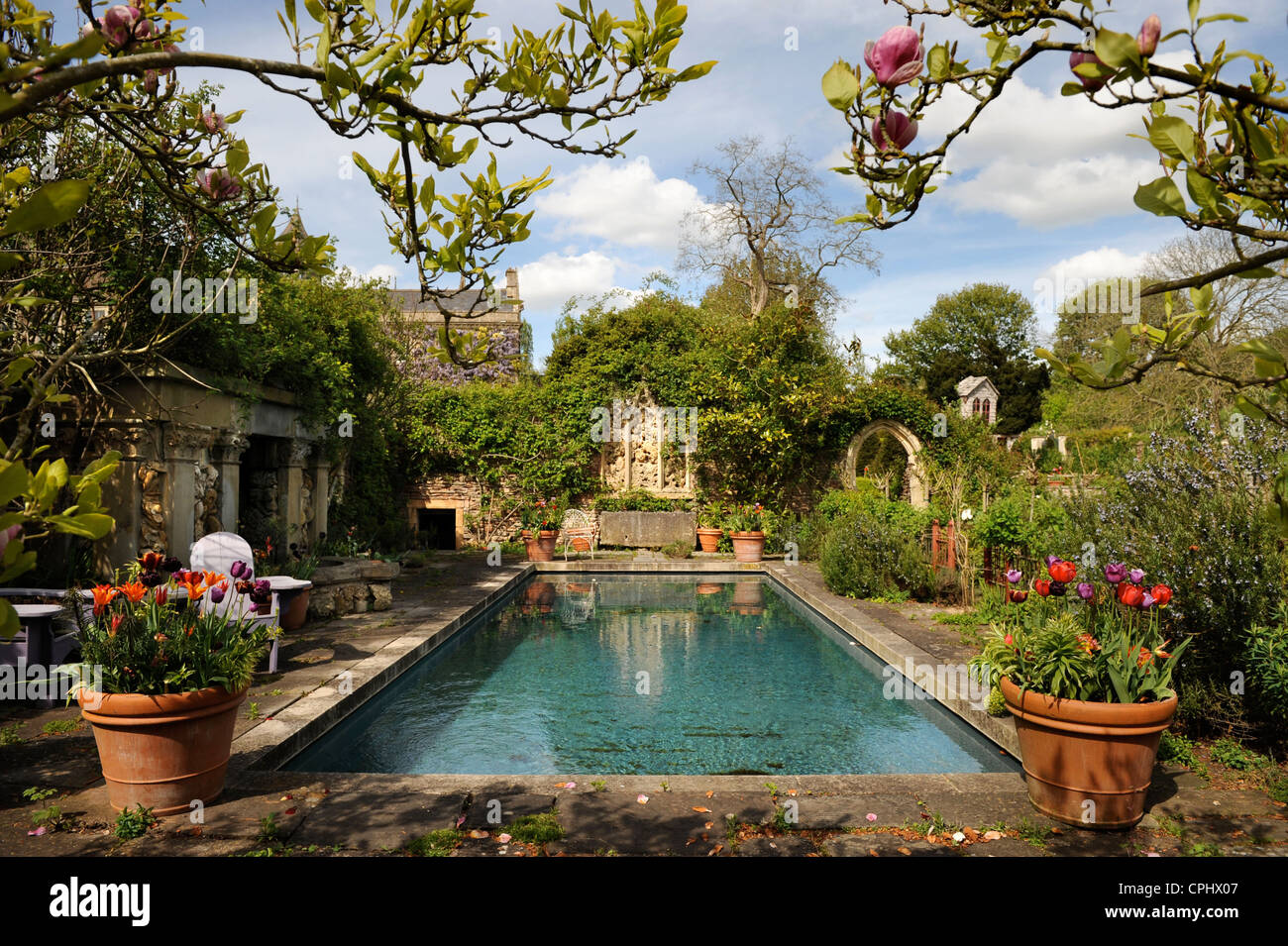 The pool garden at hanham court gardens near bath home of for Garden near pool