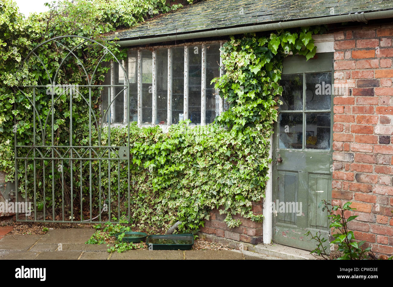 Old garden house - Old Garden Potting Shed With Ivy Worcestershire England Uk