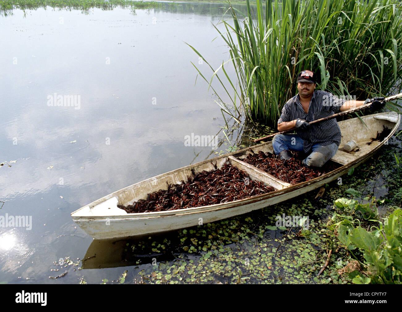 United states louisiana larose fishing crawfish in the for Fishing with crawfish
