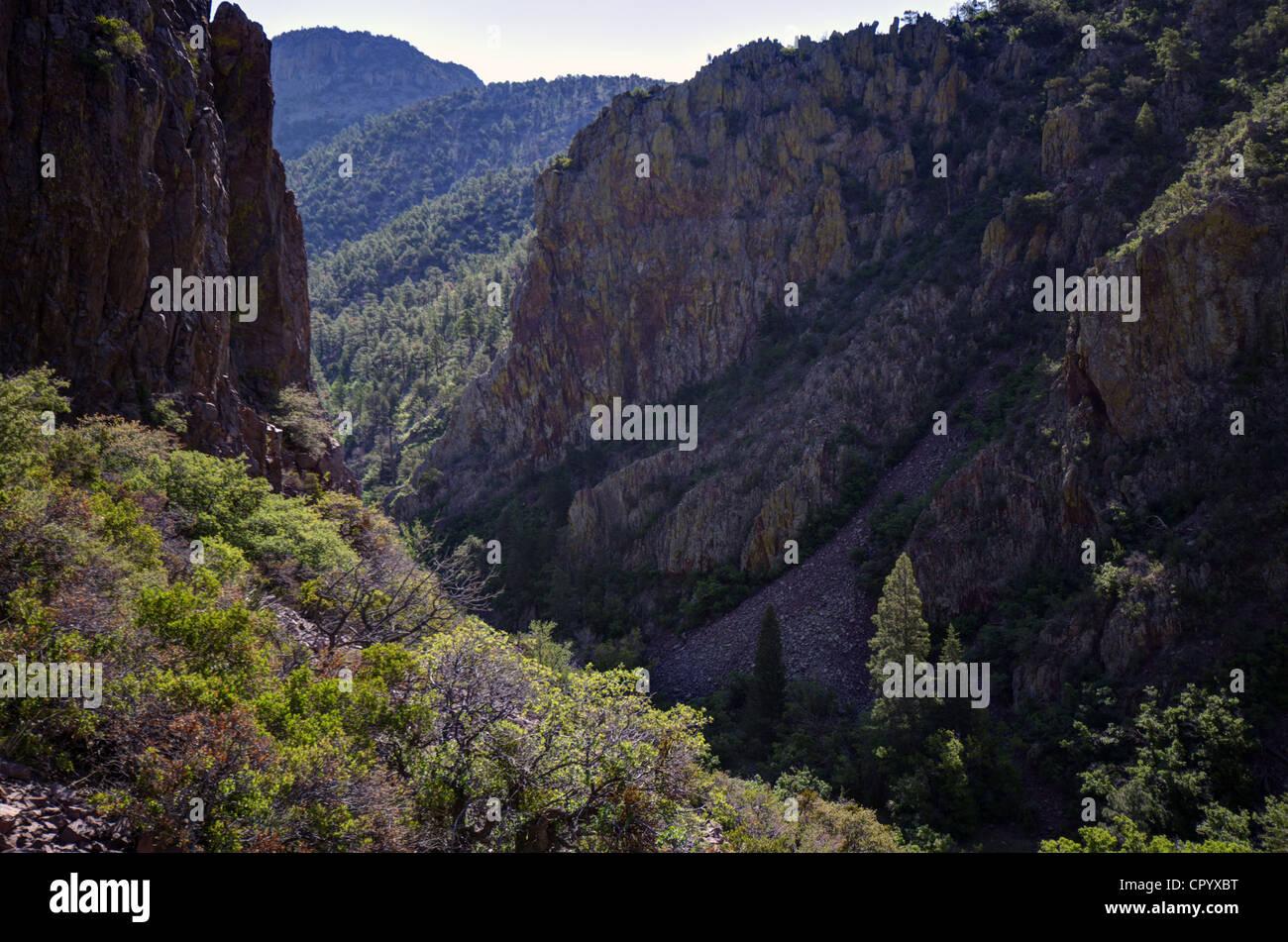 New mexico socorro county magdalena - South Canyon Magdalena Mountains Socorro County New Mexico Usa