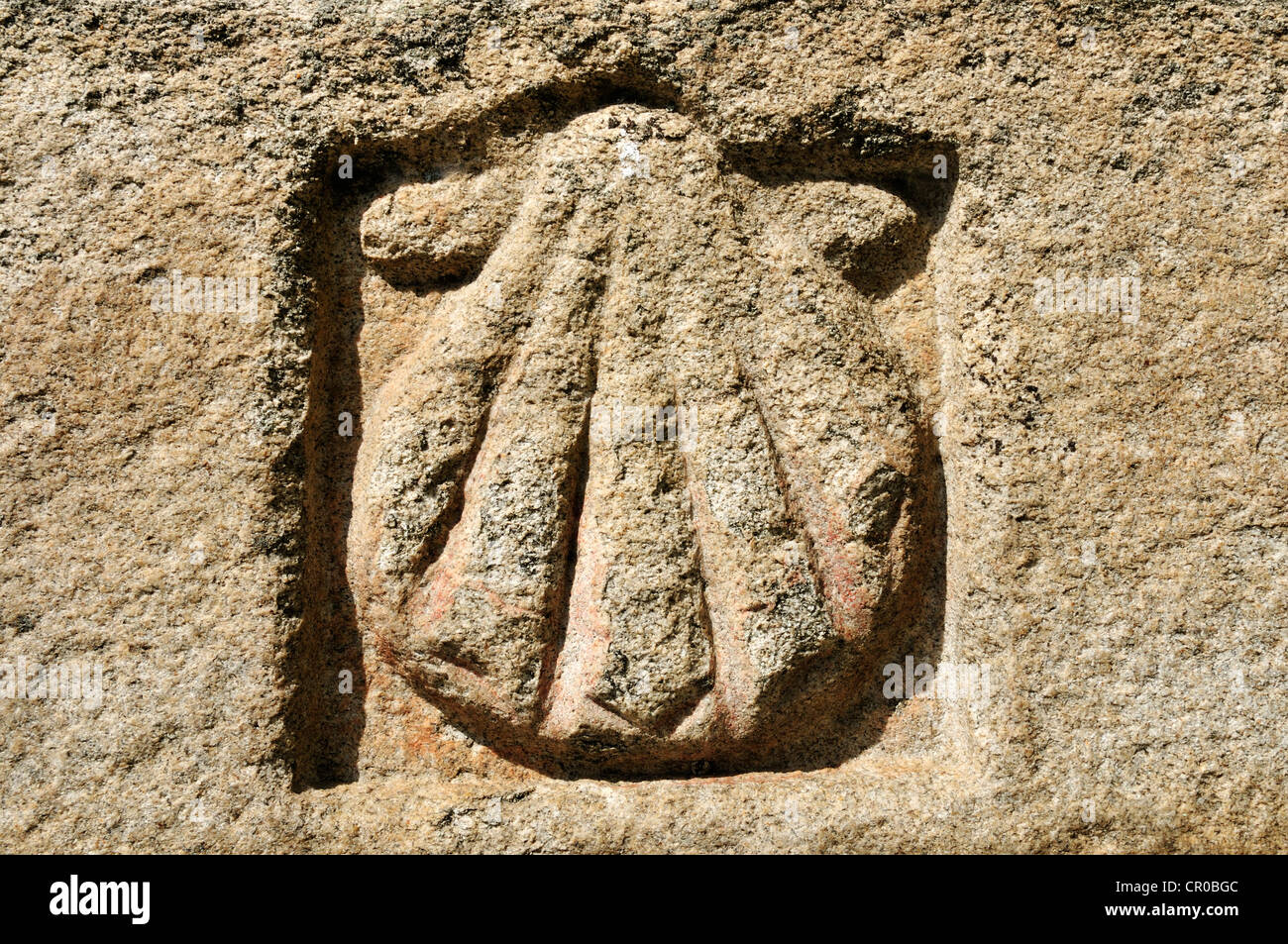Scallop shell traditional emblem of james blaze of el camino de scallop shell traditional emblem of james blaze of el camino de santiago st james way avila castilla y leon or castile biocorpaavc Image collections