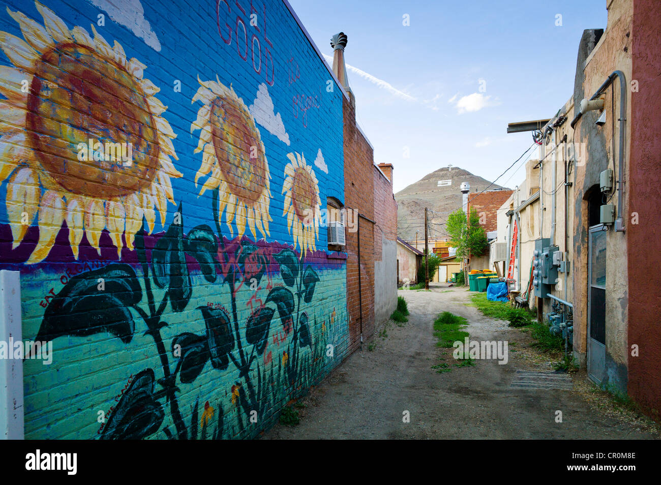 colorful murals painted on the brick wall of a building in