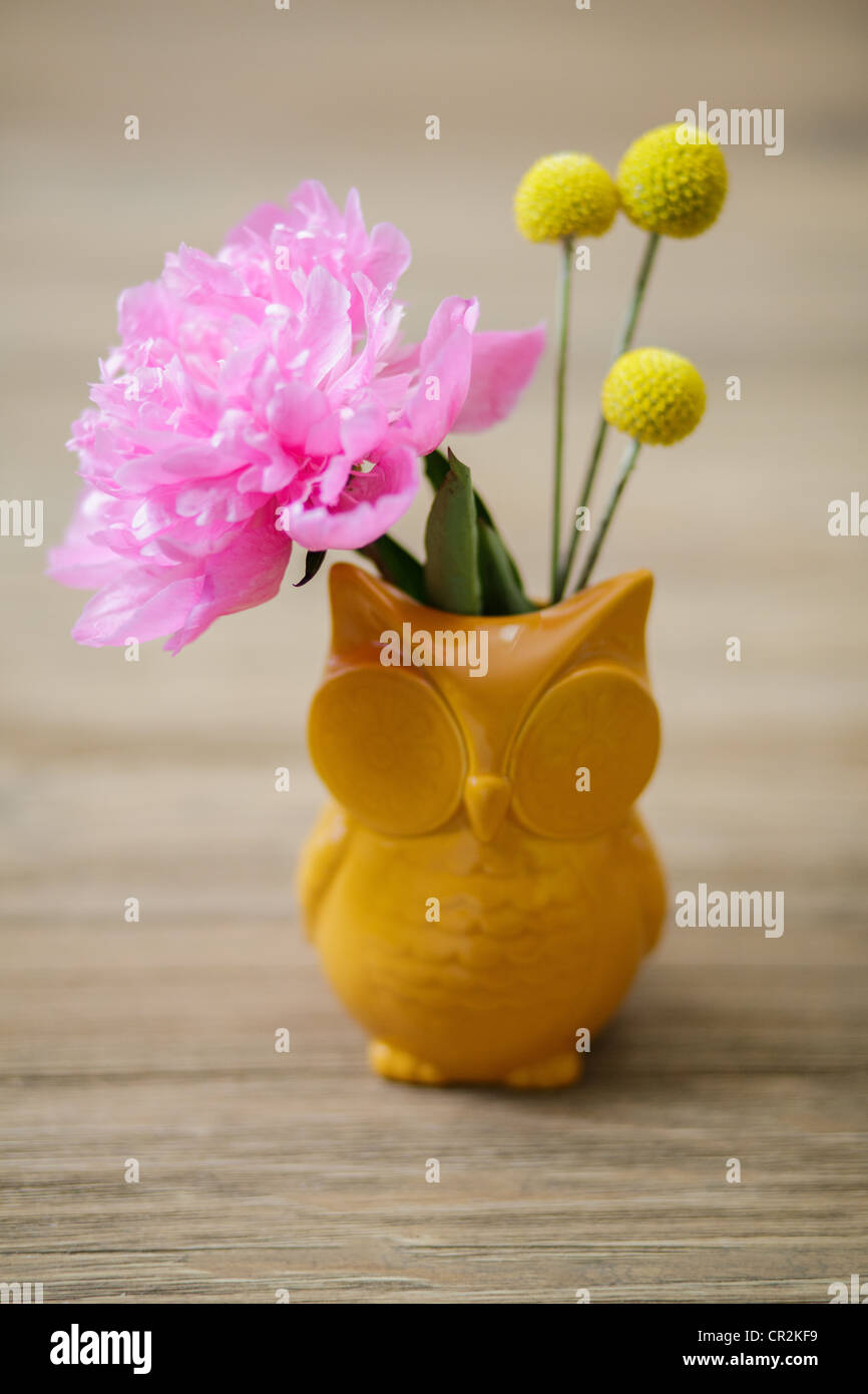A small bouquet of flowers craspedia billy balls and a peony a small bouquet of flowers craspedia billy balls and a peony inside of an owl shaped vase reviewsmspy